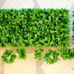 Por que investir em uma frota ecológica?